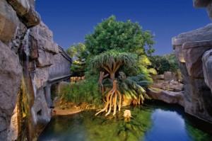 Bioparc Fuengirola Zoo - Midnight