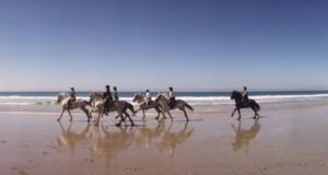 Horse riding in Costa del Sol